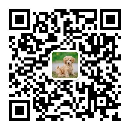 上海各区水磨海选.可上门跟工作室,电话微信同号17521529223